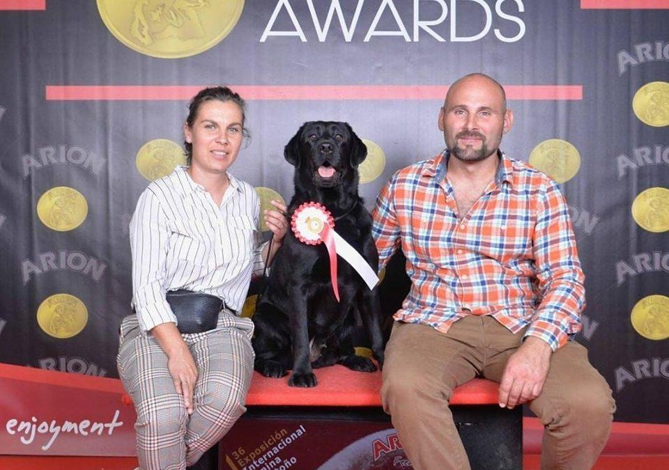 Dinamita consigue el título de CAMPEÓN en ESPAÑA